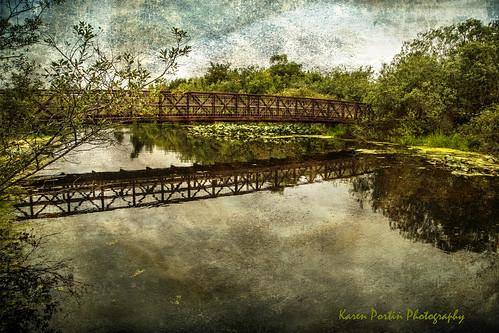 bridge texture reflections jerryjones bellevueslough