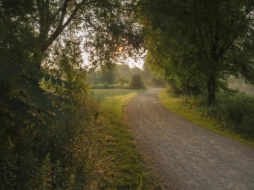 Morning Trail by Alan Norsworthy
