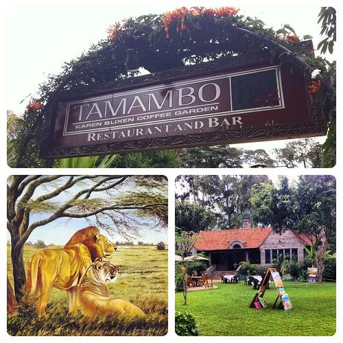 Tamambo - Karen Blixen Coffee Garden