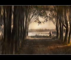 In bici lungo il Po
