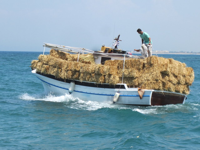 Greece 2012 036