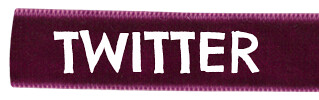 purple 320 100 TWITTER
