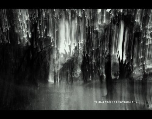 Fine-art-landscap-o-graphy_01