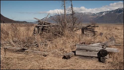 Cabin ruins, Hope, AK