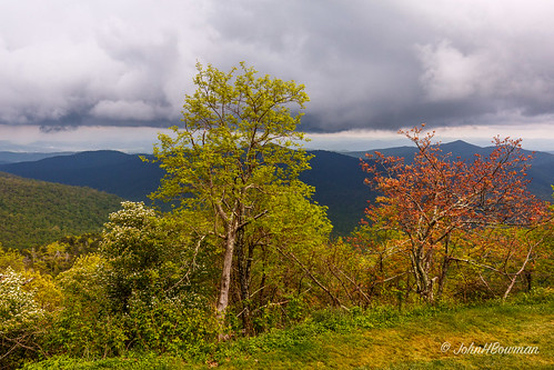 may parks northcarolina nationalparks blueridgeparkway 2016 ncmountains cloudyskies springcolors pisgahinn transylvaniacounty canon24704l may2016