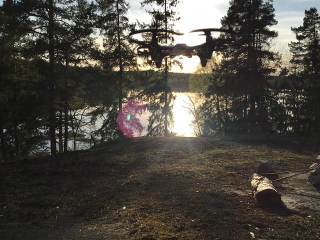 Quadrocopter-flygning i skogen