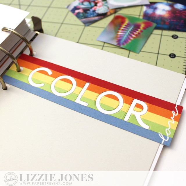 Color Love Divider Close Up