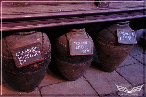 The Establishing Shot: The Making of Harry Potter Tour - Diagon AlleyClabbert Pustules, Dragon Liver, Chizpurfle Fangs Outside Mr. Mulpepper's Apothecary by Craig Grobler