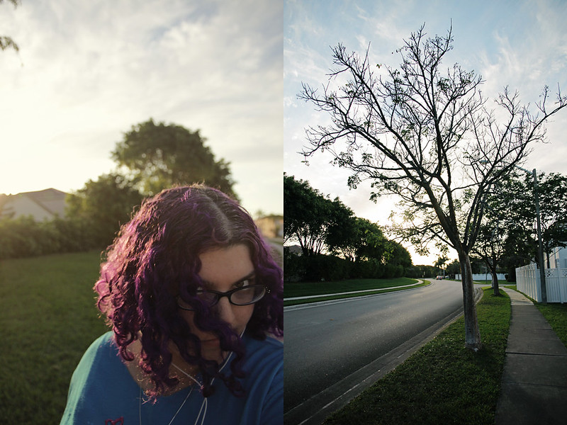 neighborhood walk diptych