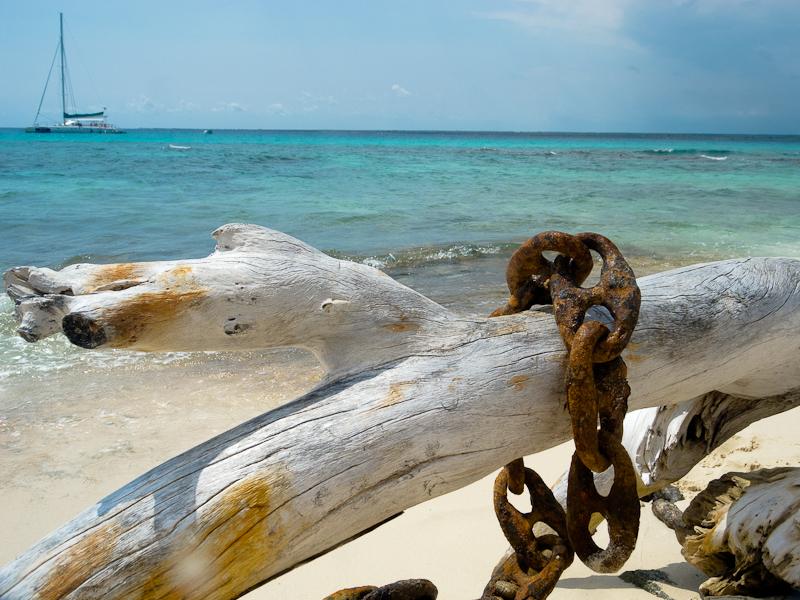 Driftwood & Chain