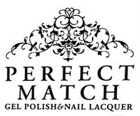 perfect match logo