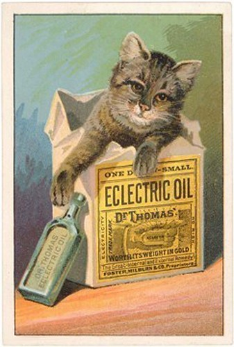 CatinBoxforElectricOilAd
