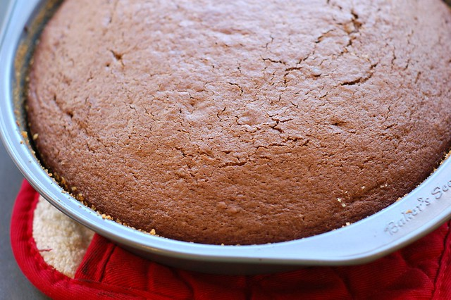 One layer of the chocolate sour cream layer cake cooling down by Eve Fox, Garden of Eating blog, copyright 2012