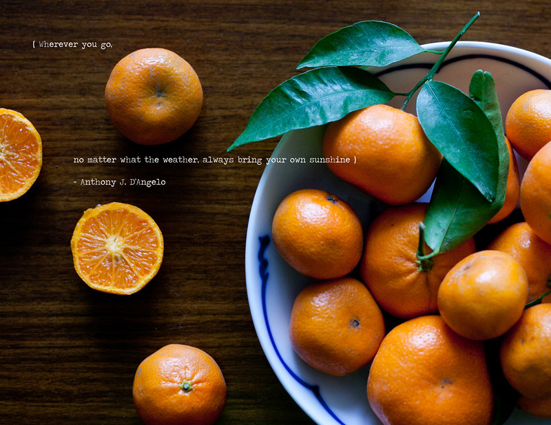 oranges-1 copy.jpg