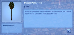 Desert Palm Tree