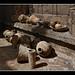 0516 vasijas rellenos cubiertas catedral sevilla