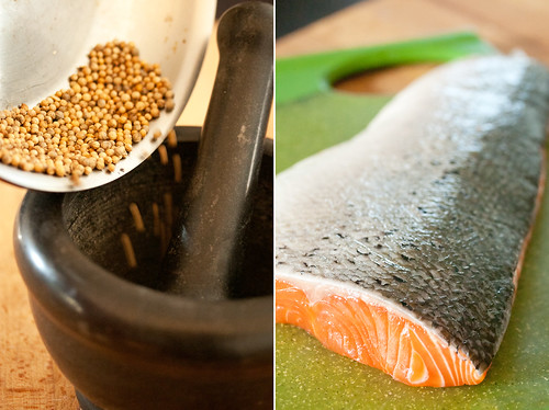 Coriander and Salmon