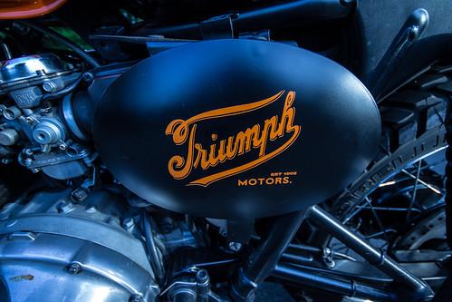 triumph logo by hokkyokuguma