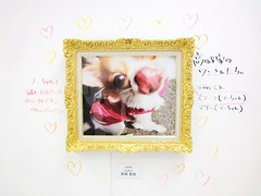 pattern(0.0), heart(0.0), greeting card(0.0), picture frame(1.0), illustration(1.0), pink(1.0),