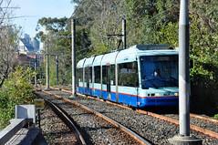 LRV 2102 approaches Glebe