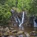 Cabin Creek Falls by John Petranka