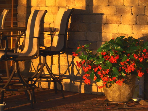 flowers sunset summer wall mi table happy golden chairs westlake hour begonia nationalgeographic retaining sooc august2012