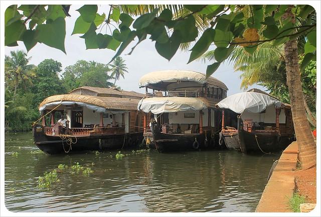 backwater houseboats