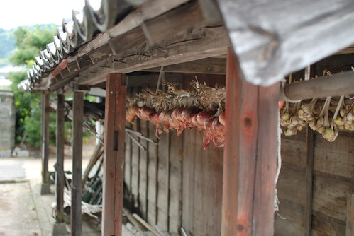 Hang onions under the eaves @ my grandmother's house.