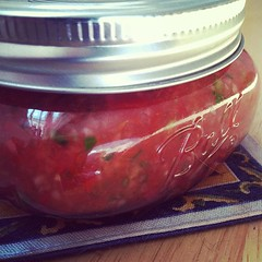 This morning's experiment - chili salsa puree?