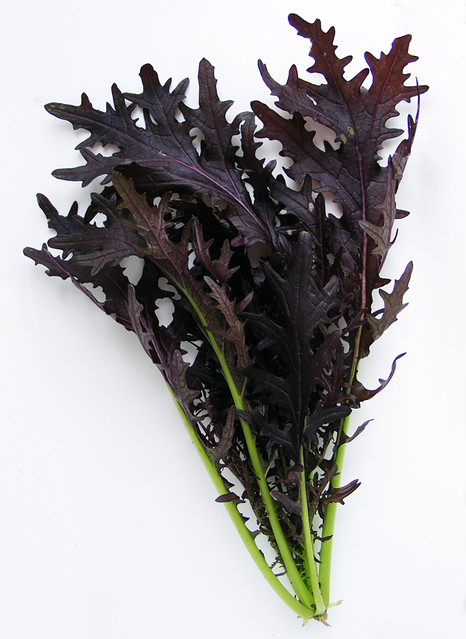 Red Feather Leaf Mustard Lettuce | Flickr - Photo Sharing!