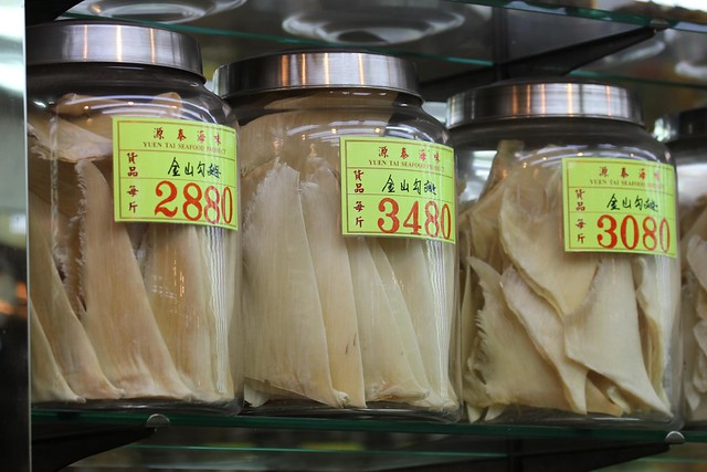 Shark Fins for sale in Hong Kong