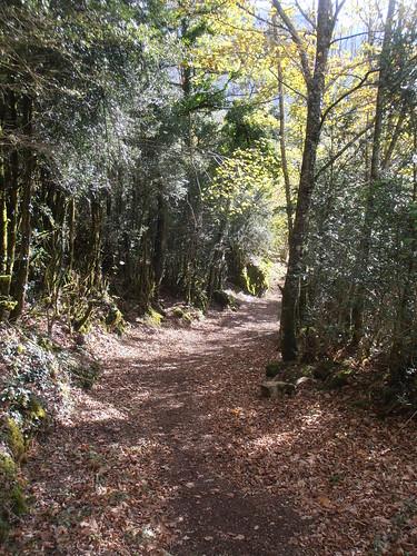 Sentier des Carrières 166