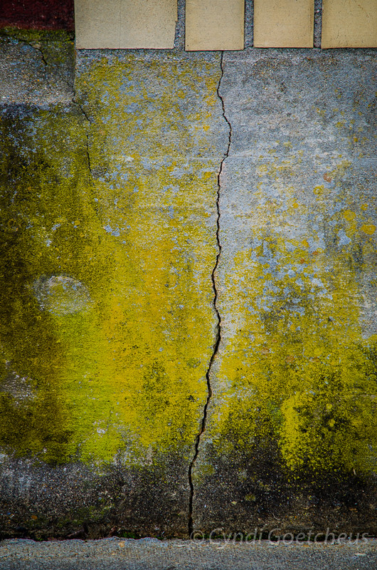 cracked wabi sabi canvas