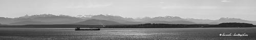 panorama mountain mountains water pugetsound olympic range