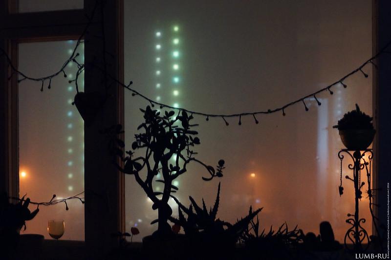 туман2014.04.08-3