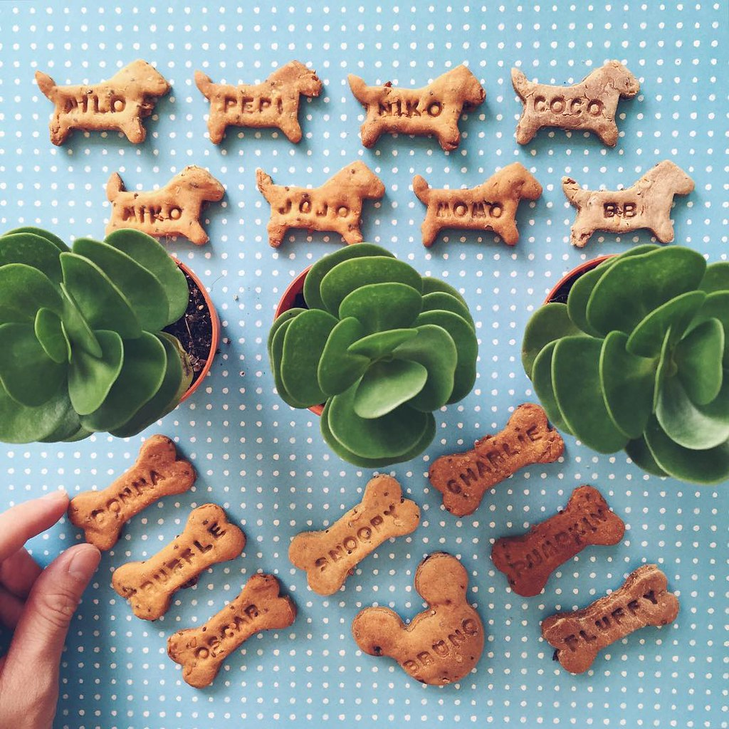 woofbakery kuala lumpur durian cookies for dogs