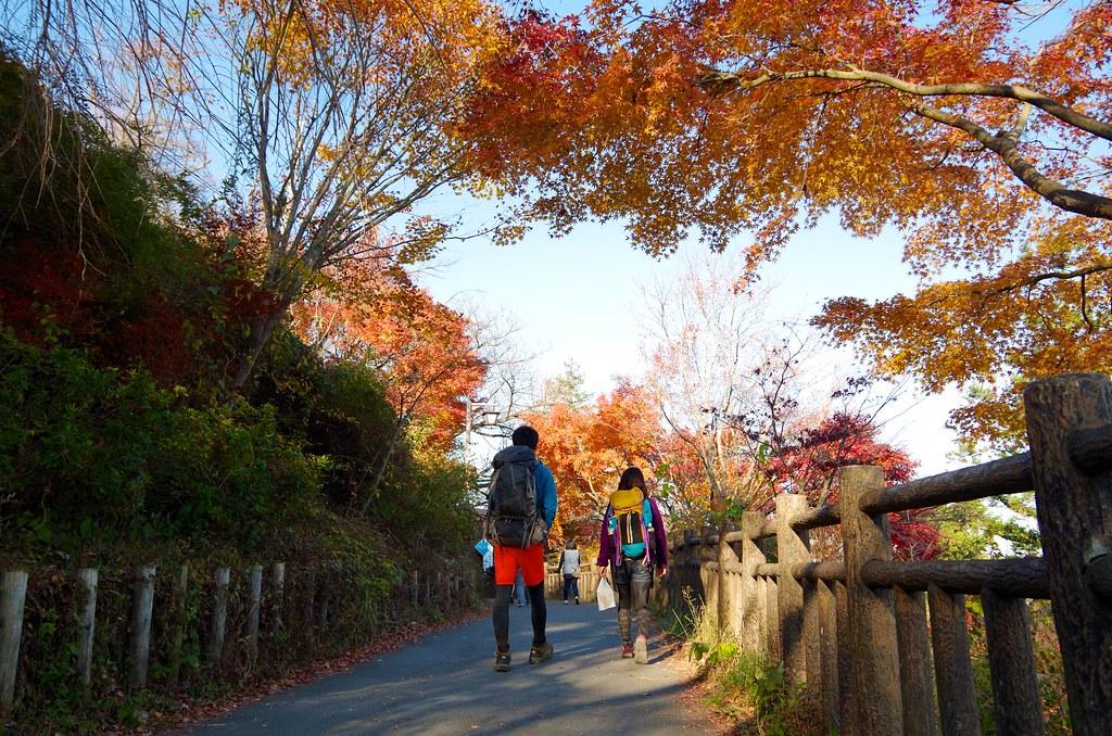 20131123_Mt.Otake 042