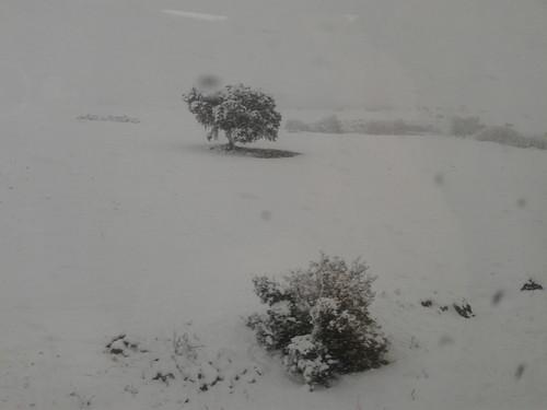 nieve en despeñaperros