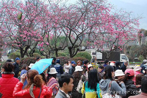 tourist crowds of Dali China