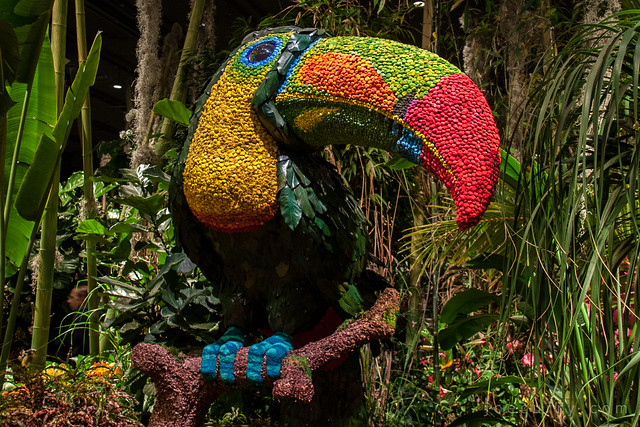 Macy's Flower Show - Brasil