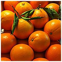 Love-Naranjas-200x200