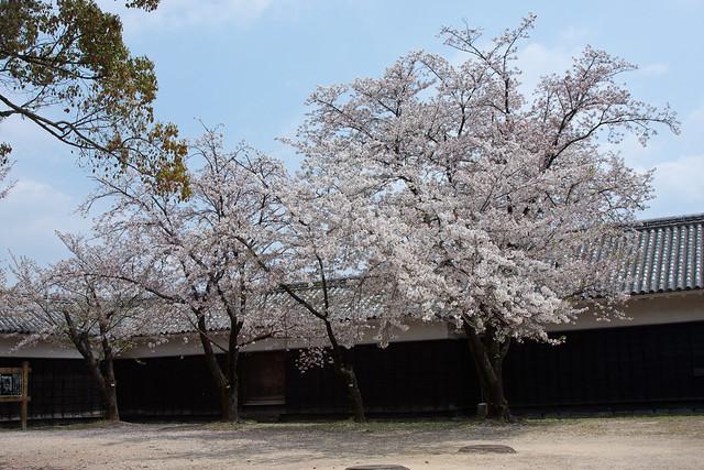 2012-kyushu-535