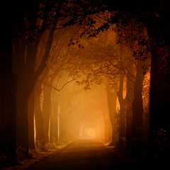 [フリー画像素材] 建築物・町並み, 道路・道, 樹木, 朝焼け・夕焼け ID:201204301200