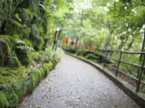 湯河原 / Yugawara