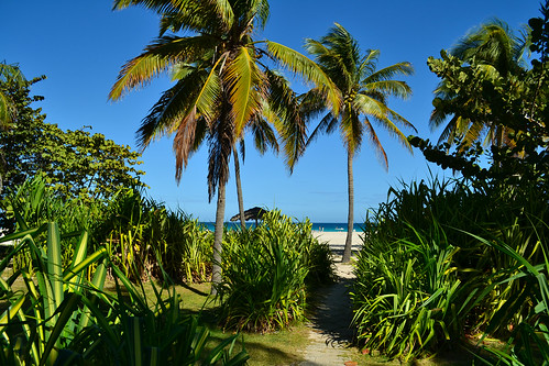 Varadero- path to beach