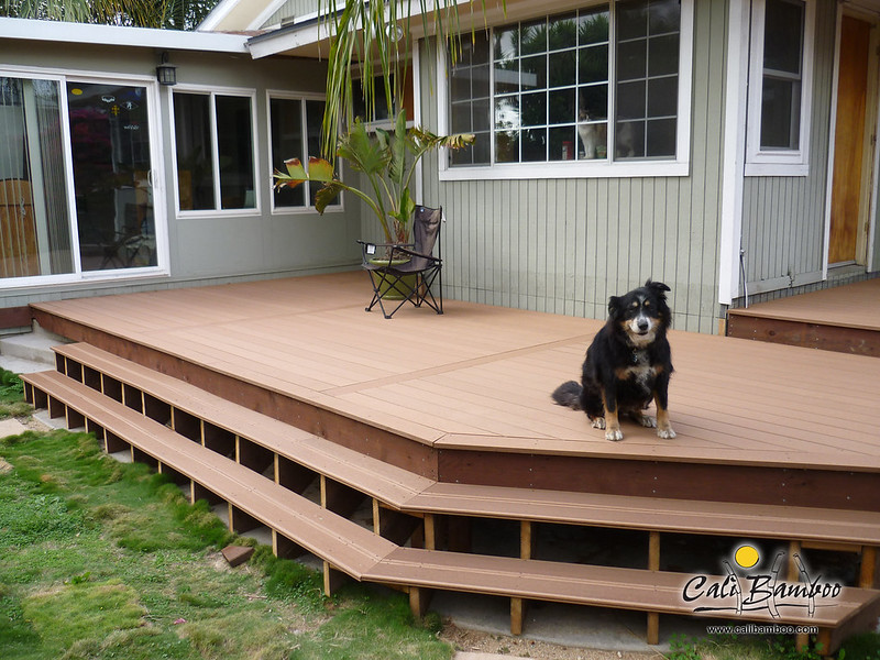 The Dog Days Of Summer Cali Bamboo Greenshoots Blog