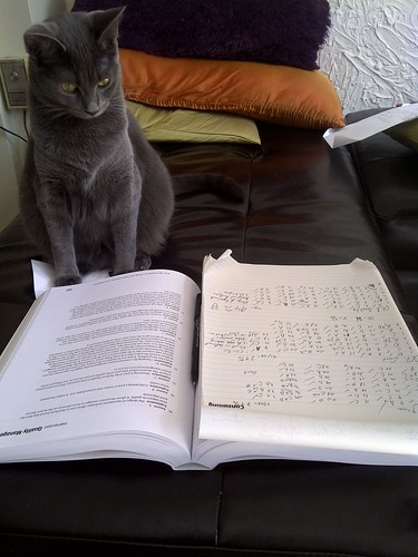Mari is studying to be a Project Management Professional