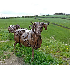 Scrap Metal Sheep by Tim Green aka atoach