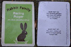Racing Roger