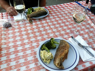 Fresh trout for dinner…along with some Toogood Sauvignon Blanc!